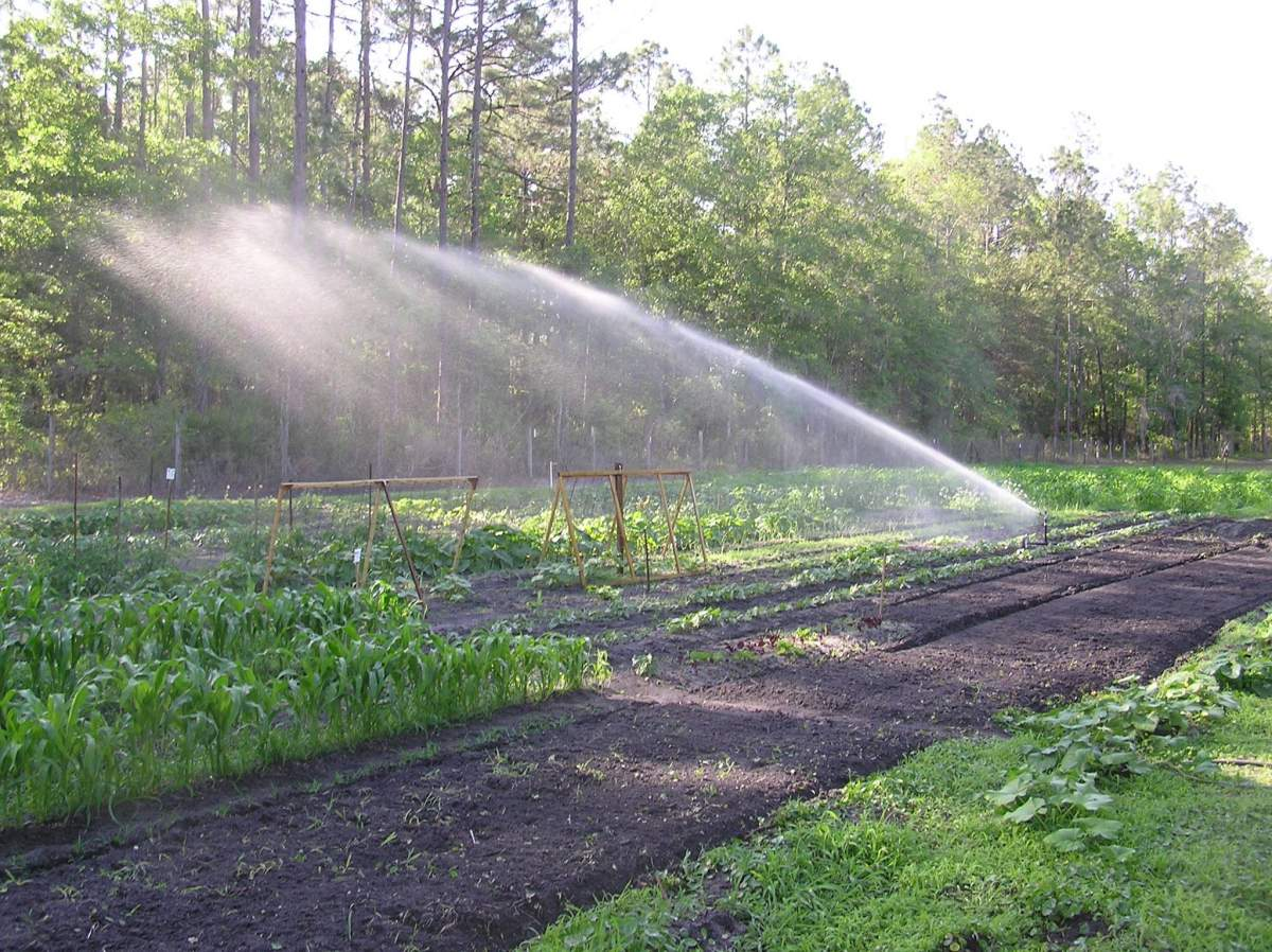 sprinkler for small farm