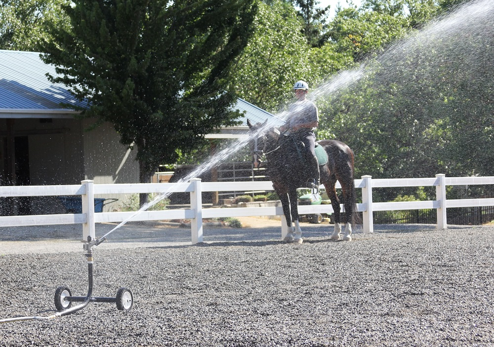 sprinkler in horse arena